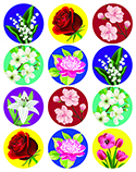 Big Real Flower Stickers