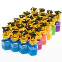 Plastic Graduation Bubble Bottles