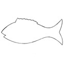 Large Cardboard Cutouts - Fish (12-PACK)